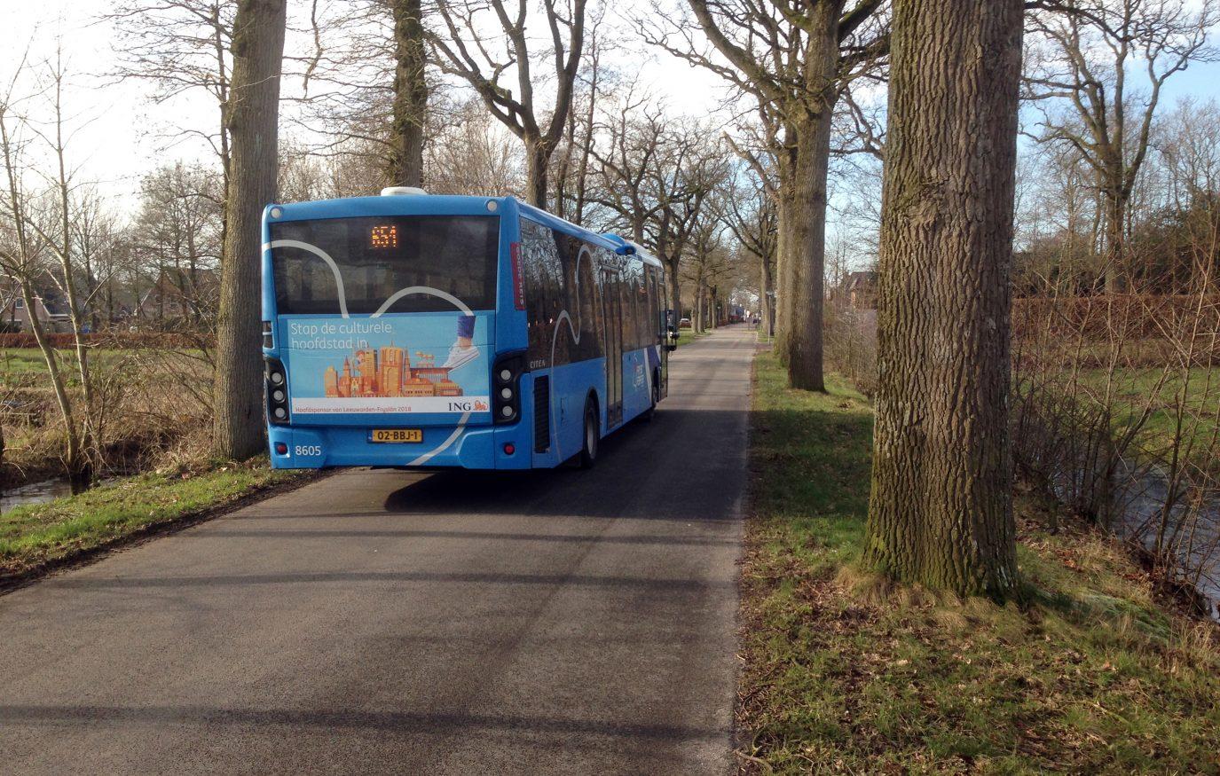 IMG_4217 bus van sminiawei